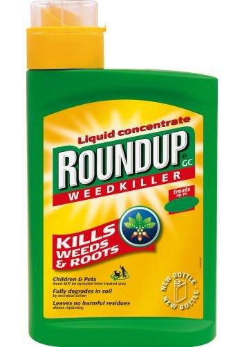 Hawaii County Considers Ban on Roundup Weed-Killer